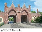 Купить «Бранденбургские ворота. Калининград (Кёнигсберг)», эксклюзивное фото № 5863349, снято 2 мая 2014 г. (c) Svet / Фотобанк Лори