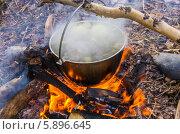 Уха в котелке на огне в лесу. Стоковое фото, фотограф Воевудский Евгений / Фотобанк Лори