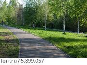 Велодорожка в парке отдыха на реке Яуза. Стоковое фото, фотограф Зауро Владимир / Фотобанк Лори