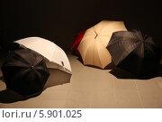 Зонты (2013 год). Редакционное фото, фотограф Андрей Кротов / Фотобанк Лори