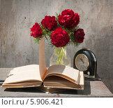 Натюрморт с открытой книгой. Стоковое фото, фотограф Короленко Елена / Фотобанк Лори