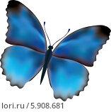 Синяя бабочка. Стоковая иллюстрация, иллюстратор Марина Новожилова / Фотобанк Лори