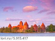 Замок Тракай, Литва (2014 год). Стоковое фото, фотограф Литвяк Игорь / Фотобанк Лори
