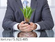 Купить «бизнесмен держит растение», фото № 5923485, снято 29 декабря 2013 г. (c) Андрей Попов / Фотобанк Лори