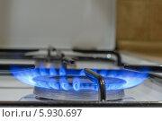 Газовая конфорка. Стоковое фото, фотограф Maselko Vitaliy / Фотобанк Лори