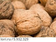 Грецкие орехи - walnuts. Стоковое фото, фотограф Федорец Артем / Фотобанк Лори