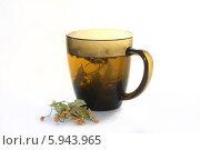 Чашка липового чая. Стоковое фото, фотограф Александр Пащенко / Фотобанк Лори