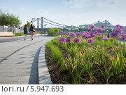 Купить «Две девушки гуляют по пешеходной зоне на Крымской набережной», эксклюзивное фото № 5947693, снято 22 мая 2014 г. (c) Родион Власов / Фотобанк Лори