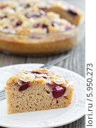 Купить «Кусок сливового пирога», фото № 5950273, снято 3 сентября 2013 г. (c) Елена Веселова / Фотобанк Лори