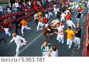 Купить «Забег с быками, Испания», фото № 5953181, снято 30 августа 2013 г. (c) Яков Филимонов / Фотобанк Лори