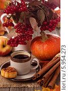 Купить «Тыква, корица, кофе и опавшие листья на столе», фото № 5954273, снято 20 сентября 2013 г. (c) Елена Веселова / Фотобанк Лори