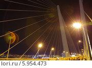 Золотой мост ночью. Владивосток (2013 год). Редакционное фото, фотограф Евгений Ковешников / Фотобанк Лори