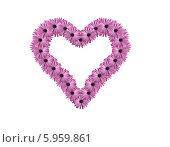 Купить «Сердце из цветов», фото № 5959861, снято 23 июля 2019 г. (c) Anton  Repin / Фотобанк Лори
