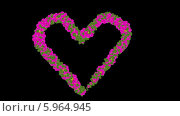 Сердце из цветов. Стоковая анимация, видеограф Александр Дейнега / Фотобанк Лори