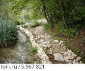 Плитвицкие озера. Национальный парк Хорватии. Стоковое фото, фотограф Татьяна Чечина / Фотобанк Лори