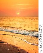 Купить «Песчаный пляж у моря на закате», фото № 5975213, снято 12 августа 2013 г. (c) g.bruev / Фотобанк Лори