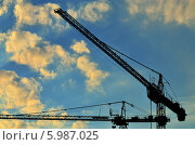 Купить «Силуэты строительных кранов на фоне лучей солнца», фото № 5987025, снято 21 января 2014 г. (c) Сергей Трофименко / Фотобанк Лори