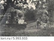 Купить «Дети на даче, 1955 год», фото № 5993933, снято 7 декабря 2019 г. (c) Retro / Фотобанк Лори