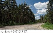 Шоссе в сосновом лесу ярким солнечным днём. Стоковое фото, фотограф Сергей Хаменок / Фотобанк Лори