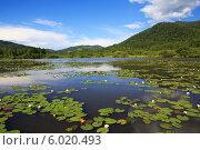 Купить «Красивое горное озеро Манжерок, Алтай», фото № 6020493, снято 23 июля 2013 г. (c) Юлия Машкова / Фотобанк Лори