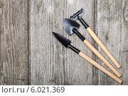 Купить «Садовый инструмент», фото № 6021369, снято 30 мая 2014 г. (c) Елена Блохина / Фотобанк Лори