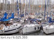 Купить «Старый порт (исп. Port Vell) Барселона. Яхты у причала», эксклюзивное фото № 6025393, снято 15 сентября 2013 г. (c) Svet / Фотобанк Лори