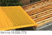 Разделительная решетка лежащая на  корпусе улья. Стоковое фото, фотограф Денис Кошель / Фотобанк Лори