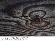 Текстура старой деревянной доски. Стоковое фото, фотограф Анна Пикунова / Фотобанк Лори