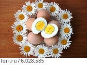 Купить «Куриные яйца целиком и в разрезе в ромашках», фото № 6028585, снято 12 июня 2014 г. (c) Елена Петухова / Фотобанк Лори