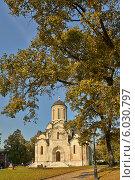 Спасский собор (2005 год). Редакционное фото, фотограф Александр Смаков / Фотобанк Лори