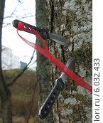 Два метательных ножа с красной ленточкой в дереве (2013 год). Редакционное фото, фотограф Хельга Танг / Фотобанк Лори
