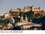 Купить «Замок Хоэнзальцбург», фото № 6054529, снято 17 мая 2012 г. (c) Артём Сапегин / Фотобанк Лори
