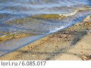 Берег озера Большие Аллаки. Стоковое фото, фотограф Марина Зырянова / Фотобанк Лори