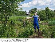 Купить «Мужчина средних лет , работающий на садовом участке в начале лета», фото № 6099037, снято 20 июня 2014 г. (c) Сергей Великанов / Фотобанк Лори