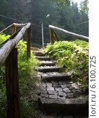 Каменная лестница с деревянными перилами в лесу. Стоковое фото, фотограф Irina / Фотобанк Лори