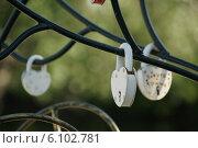 Замки любви. Стоковое фото, фотограф Максим Мистюков / Фотобанк Лори