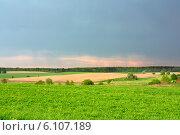 Зелёное поле и небо. Стоковое фото, фотограф Александр Власик / Фотобанк Лори