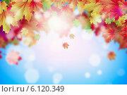 Купить «Autumn leaves», фото № 6120349, снято 12 мая 2013 г. (c) Sergey Nivens / Фотобанк Лори