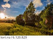 Купить «Солнечный закат в Подмосковье», фото № 6120829, снято 23 июня 2014 г. (c) Сергей Великанов / Фотобанк Лори