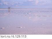 Купить «Солёное бессточное самосадочное озеро Эльтон, Палласовский район Волгоградской области», фото № 6129113, снято 12 июня 2014 г. (c) Виктор Водолазький / Фотобанк Лори