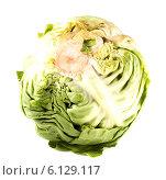 Купить «Кочан капусты на белом фоне», фото № 6129117, снято 12 июля 2014 г. (c) Литвяк Игорь / Фотобанк Лори