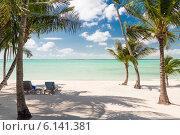 Купить «tropical beach with palm trees», фото № 6141381, снято 15 февраля 2014 г. (c) Syda Productions / Фотобанк Лори