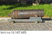 Купить «Старинная пушка на территории Петропавловской крепости», фото № 6147685, снято 28 июня 2014 г. (c) Ельцов Владимир / Фотобанк Лори