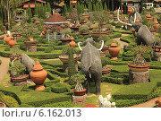Купить «Таиланд. Тропический сад Нонг Нуч (Nong Nooch)», фото № 6162013, снято 22 февраля 2014 г. (c) Алексей Сварцов / Фотобанк Лори