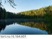 Купить «Безымянное озеро в Ленинградской области летним утром», фото № 6164601, снято 21 июля 2014 г. (c) Мария Козаченко / Фотобанк Лори