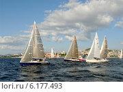 Купить «Яхты в море во время регаты, Амурский залив, Владивосток», фото № 6177493, снято 21 августа 2008 г. (c) Георгий Хрущев / Фотобанк Лори