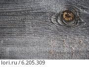 Купить «Поверхность старой потрескавшейся доски с суком», фото № 6205309, снято 18 июля 2014 г. (c) Александр Филитарин / Фотобанк Лори