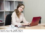 Купить «Руководитель работает за ноутбуком в офисе», фото № 6205921, снято 27 марта 2014 г. (c) Иванов Алексей / Фотобанк Лори