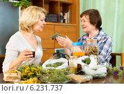 Купить «woman explaining to her neighbor about the tea», фото № 6231737, снято 20 мая 2014 г. (c) Яков Филимонов / Фотобанк Лори