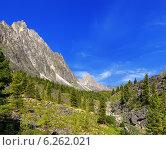 Солнечный летний день в горной долине. Восточные Саяны. Бурятия. Стоковое фото, фотограф Виктор Никитин / Фотобанк Лори